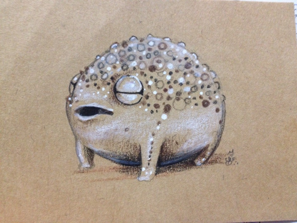 Frog Nugget The Best Piece Of Art I Have Ever Created The Size Of