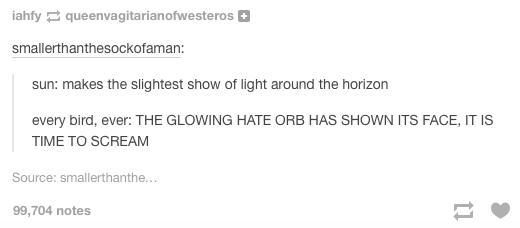 Iahfyqueenvagitarianofwesteros Smallerthanthesockofaman Sun Makes The Slightest Show Of Light Around Horizon Every Bird