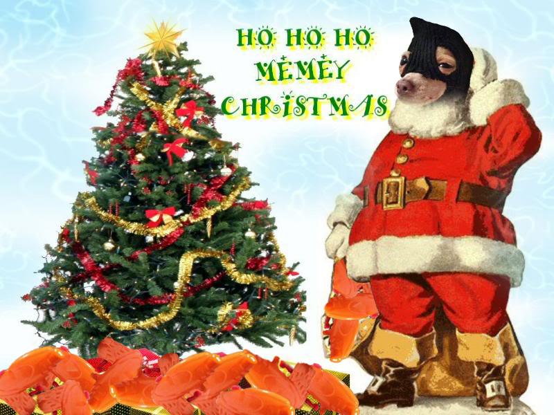 Dog Christmas Tree Meme.Merry Christmas From Smug Dog Photo Of Smug Dog Wearing