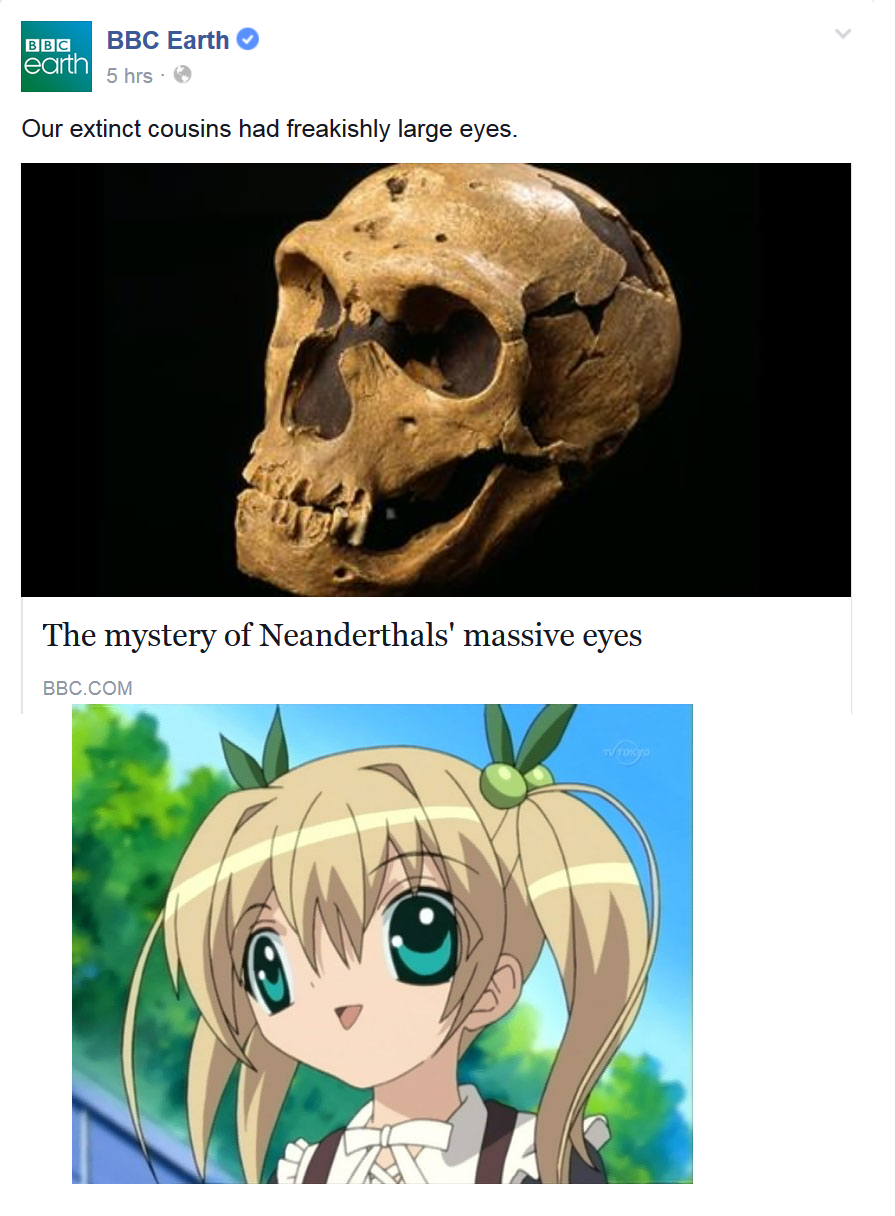 ANIMU WAS REAL !!!  Anime / Manga  Know Your Meme