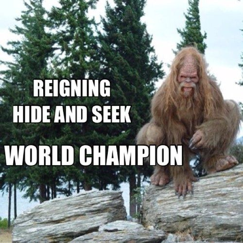 b970fe3c Bigfoot | The Hide and Seek Champion | Know Your Meme