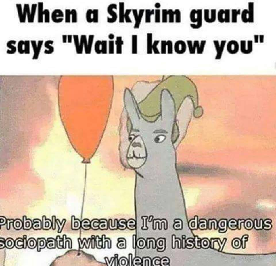 When A Skyrim Guard Says Wait I Know You Probably Because Tm