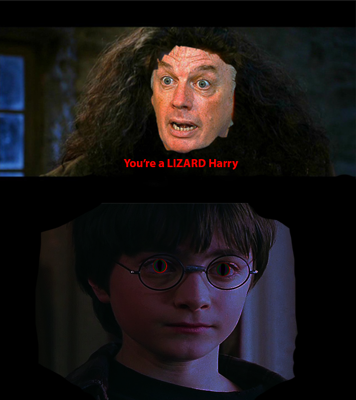 proper lizard harry you re a wizard harry know your meme