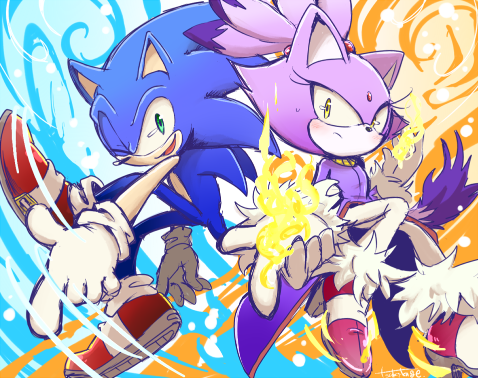 Sonic Rush And Blaze Are Now 10 Years Old Sonic The Hedgehog