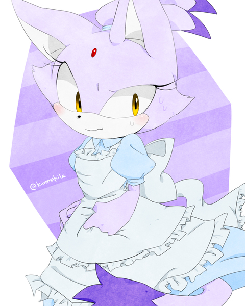 Maid Blaze Sonic The Hedgehog Know Your Meme