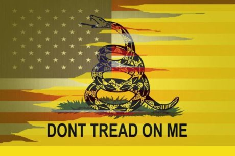 superimposed with american flag gadsden flag don t tread on me
