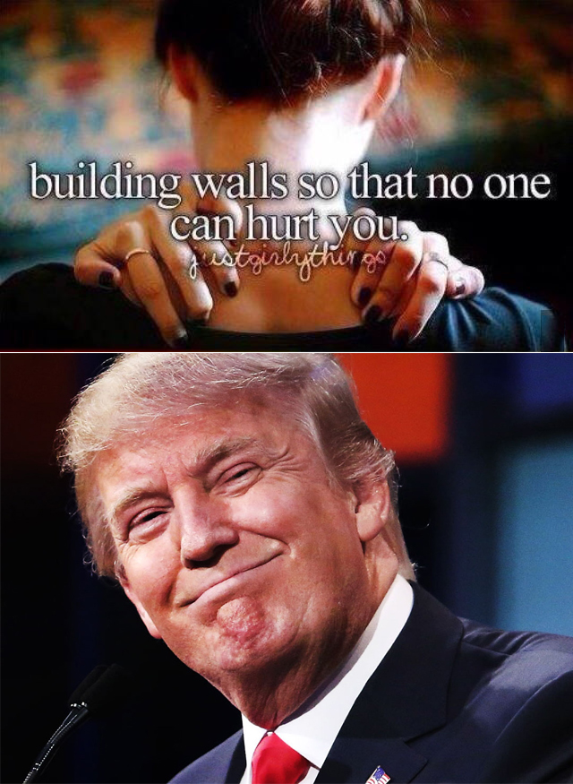 701 justgirlythings donald trump's wall know your meme