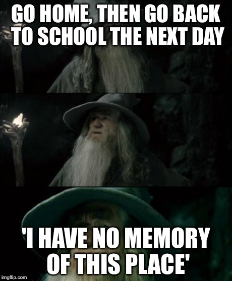 Go Home Then Go Back To School The Next Day Confused Gandalf