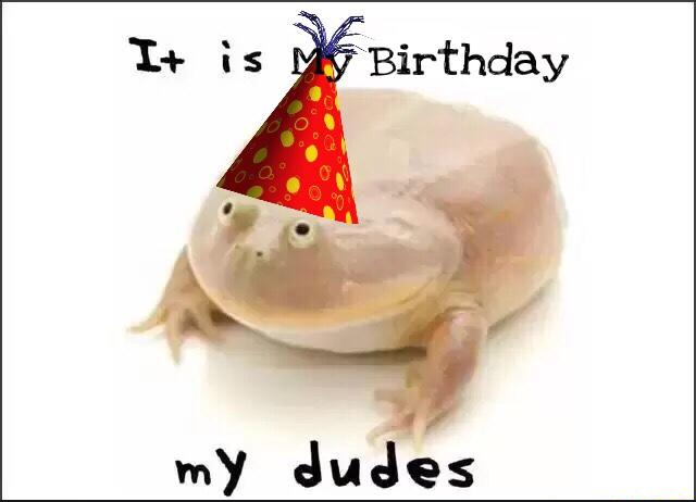 2611ba31cb4e It is my birthday, my dudes | It Is Wednesday My Dudes | Know Your Meme