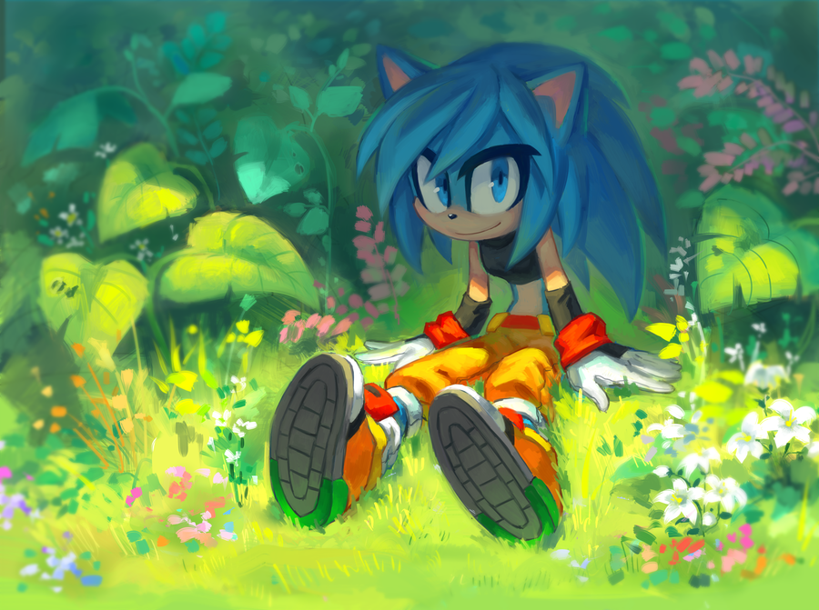 Pretty Art Sonic Original Characters Know Your Meme