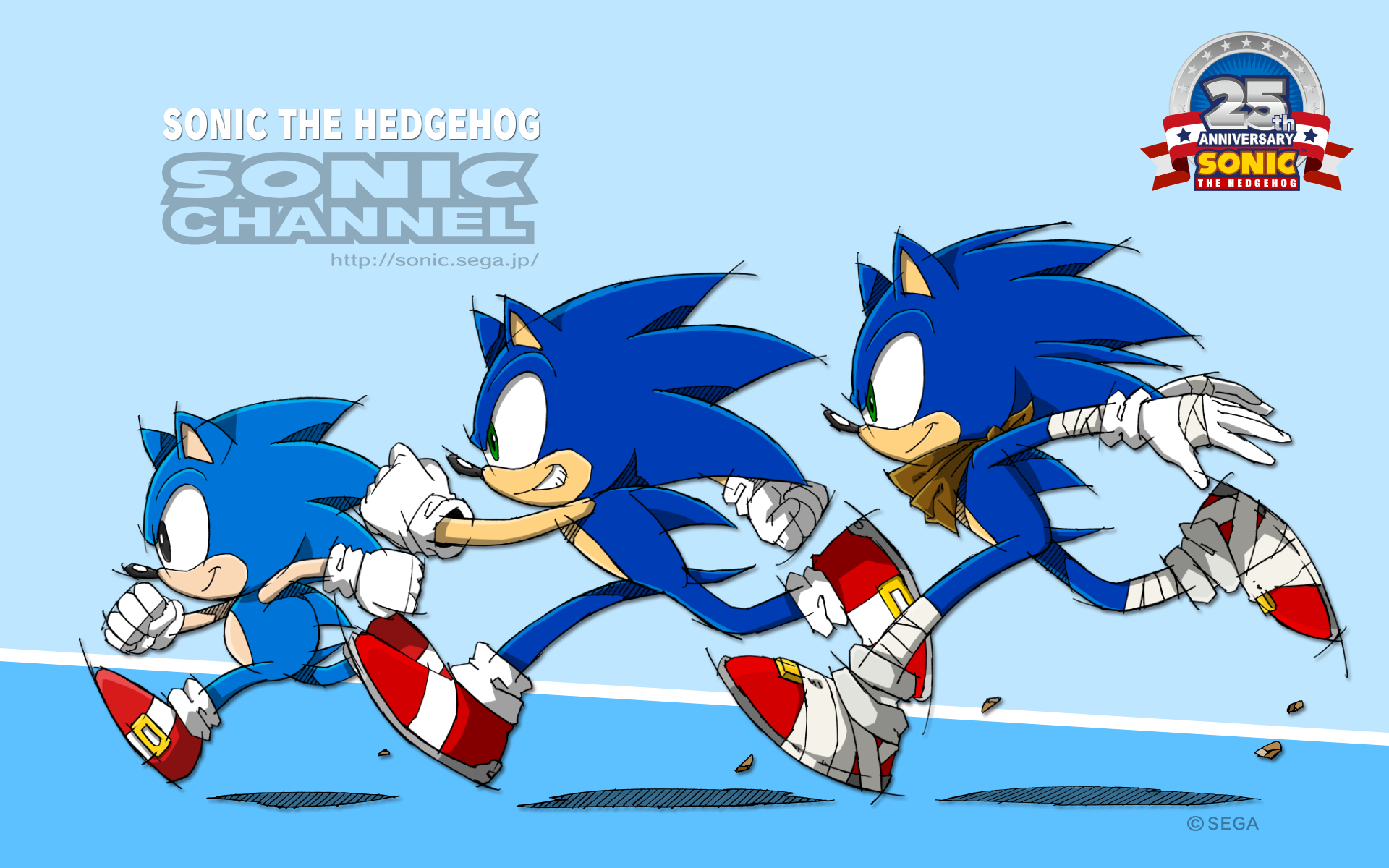 SONIC THE HEDGEHOG Th ANNIVERSARY HEDGE HO G CHANNEL Sonic