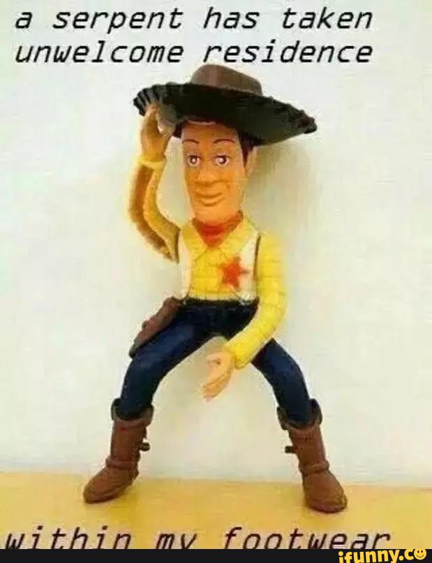 Toy Story Woody Meme