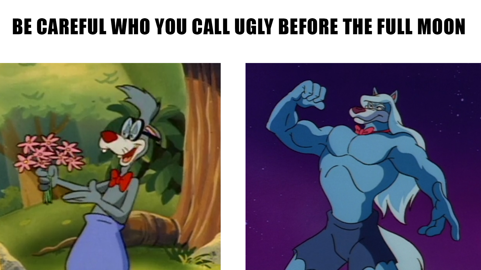Wilford Wolf Be Careful Who You Call Ugly In Middle School