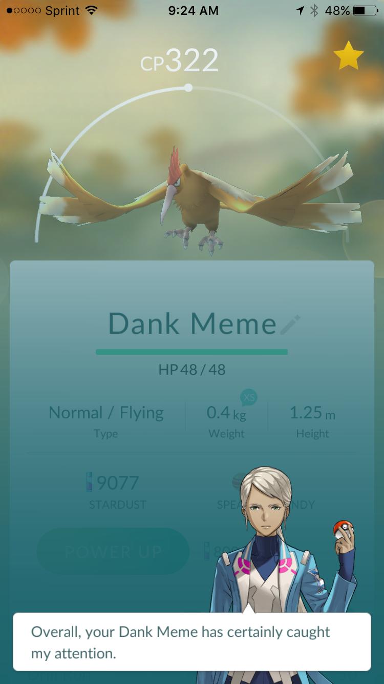 Dank Meme Pokemon Go Appraisals Know Your Meme