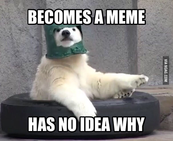 This Meme Is Un Bear Able Poorly Prepared Polar Bear Know Your Meme