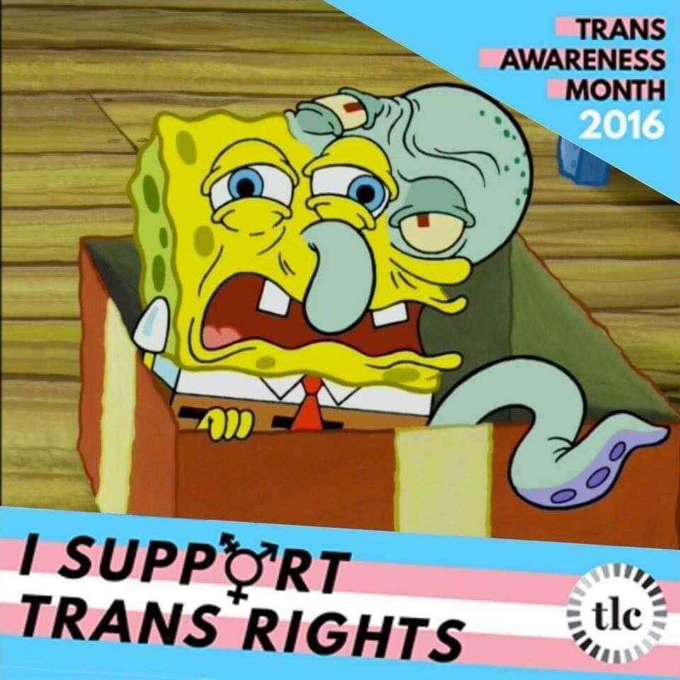 Trans awareness month 2016 isupphrt transrights tlc