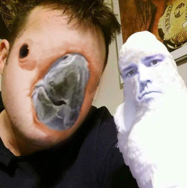 face swapping with a parrot face swap know your meme