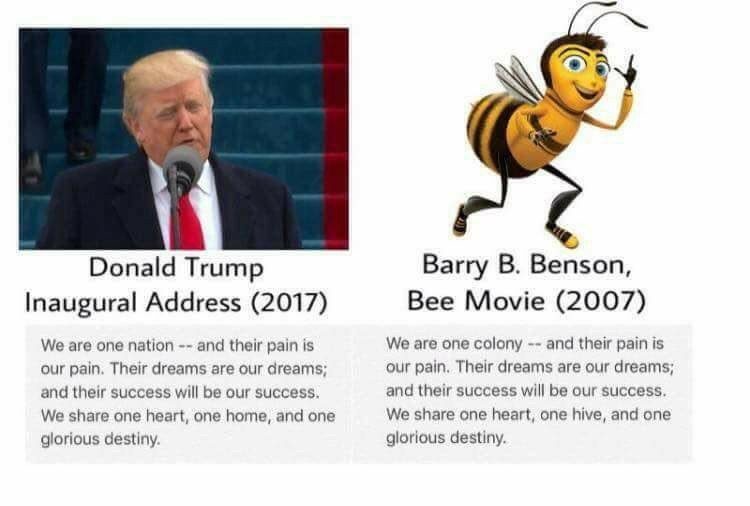 Bee Movie Quotes Trump Plagiarizes Bee Movie | Donald Trump Quotes Bane | Know Your  Bee Movie Quotes