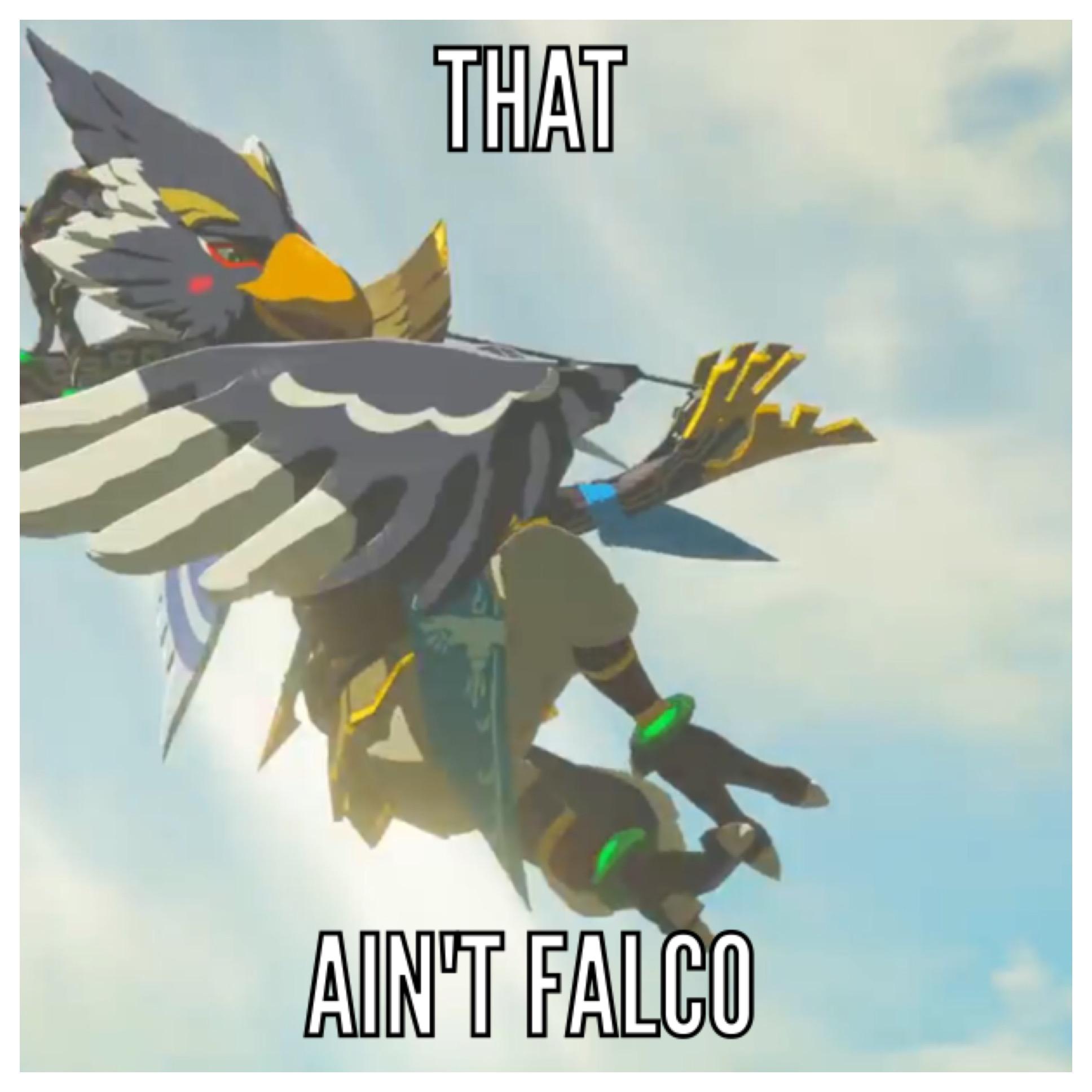 Rito Aint Falco The Legend Of Zelda Breath Of The Wild Know
