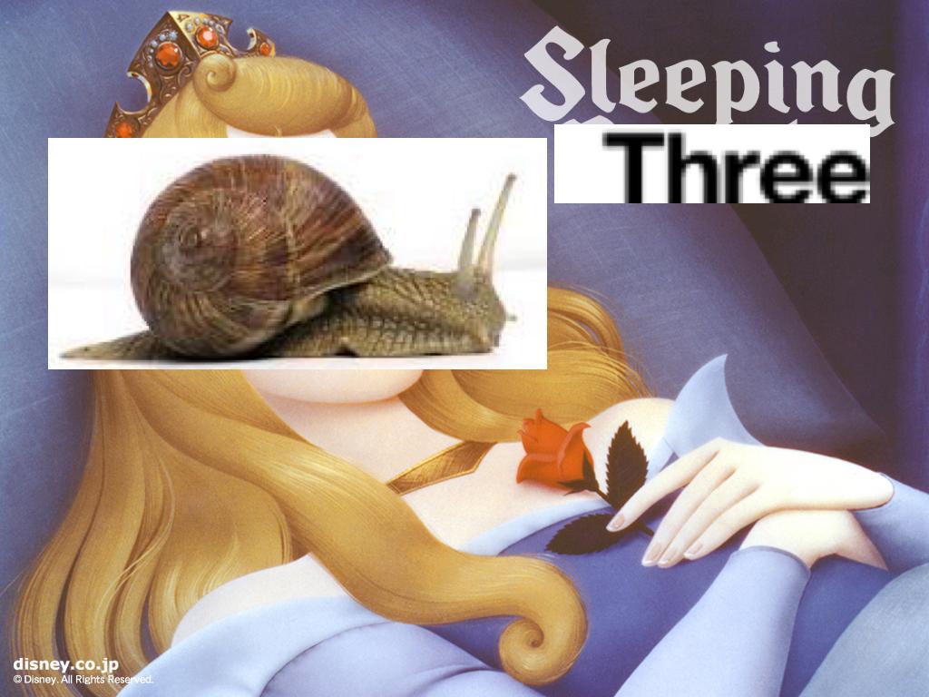 Snails sleep 3 sleeping 3