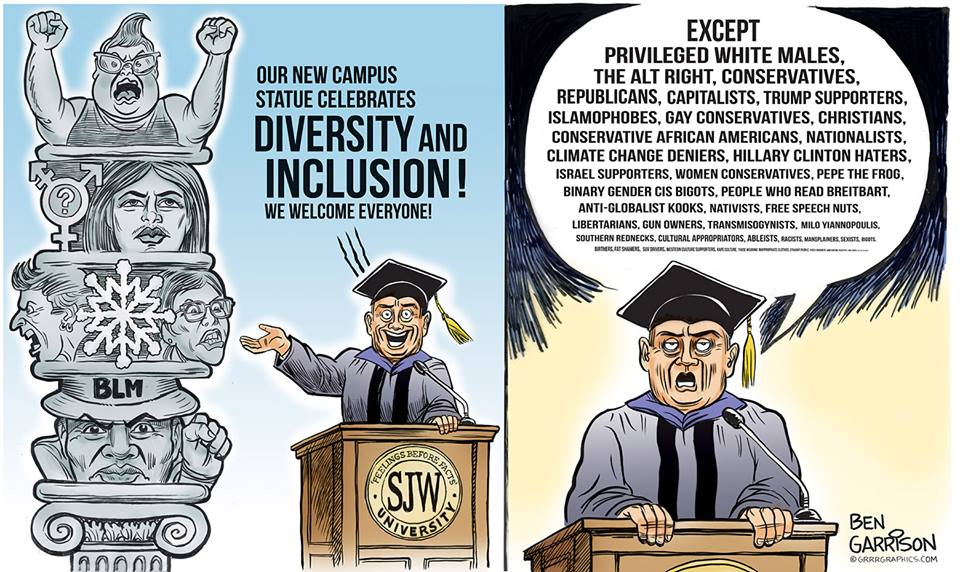Image result for white privilege cartoons ben garrison