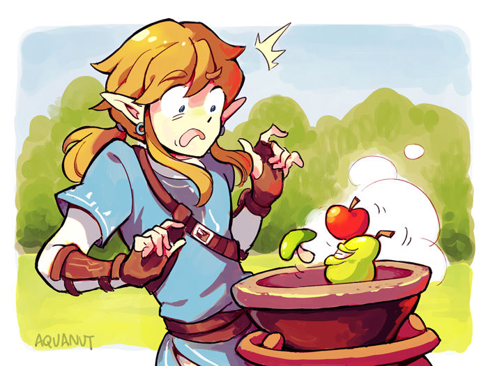 Very Dubious Food By Aquanut The Legend Of Zelda Breath Of The