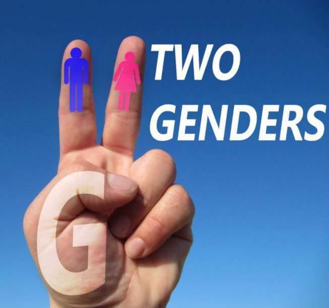 2 Genders Ok Symbol Know Your Meme