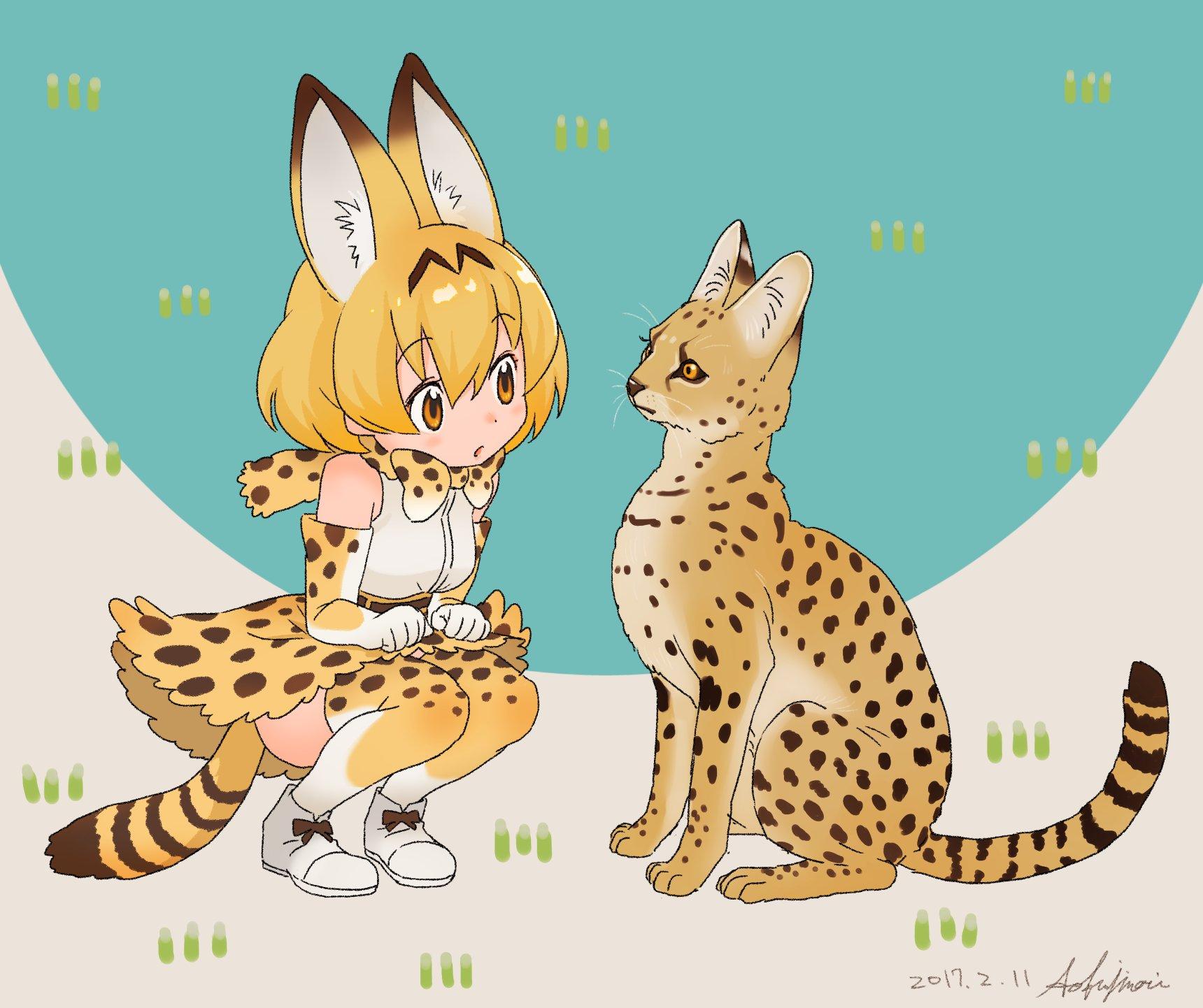 Servals by pio   Kemono Friends   Know Your Meme
