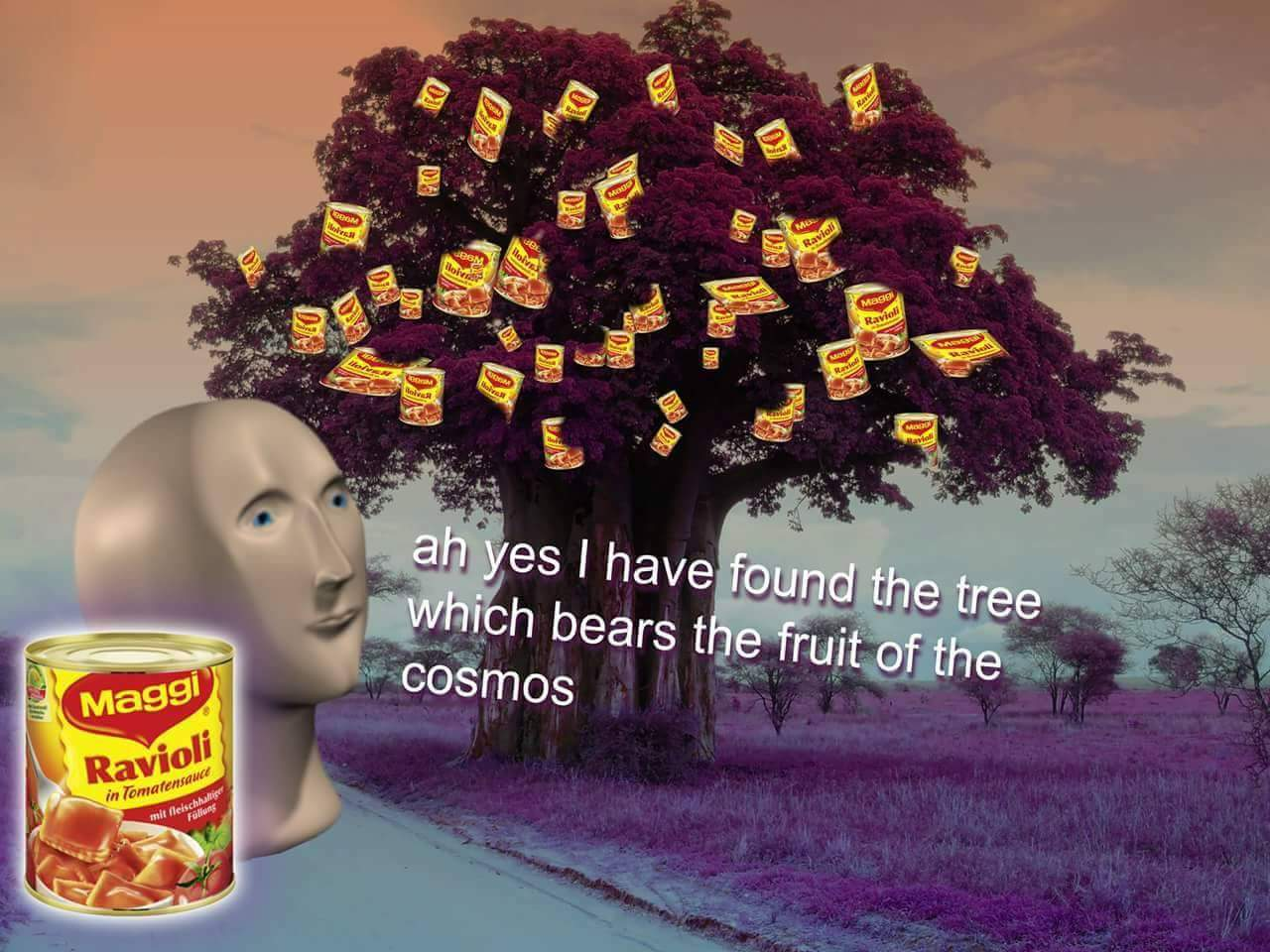Ah Yes I Have Found The Tree Which Bears The Fruit Of The Cosmos