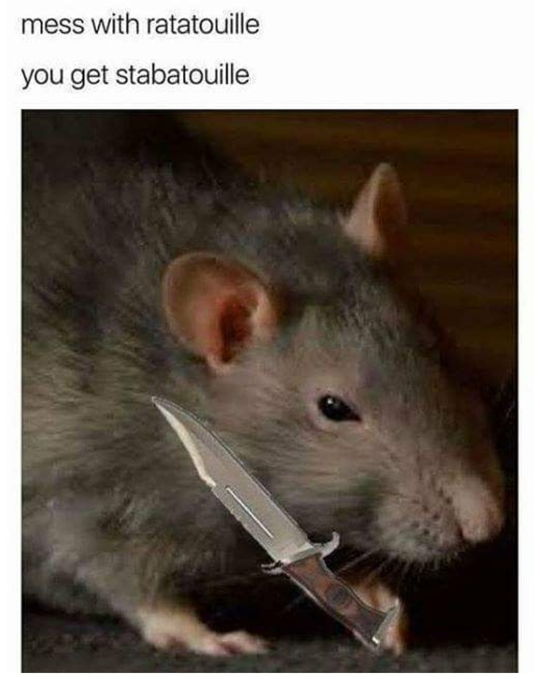 Mess With Ratatouille You Get Stabatouille You Mess With Crabo You Get A Stabo Know Your Meme