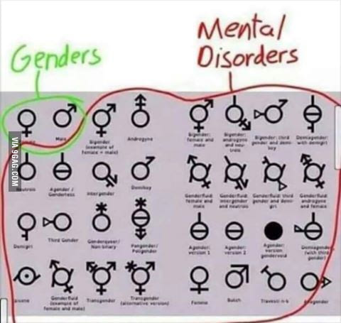 genders vs mental disorders there are only 2 genders know your meme