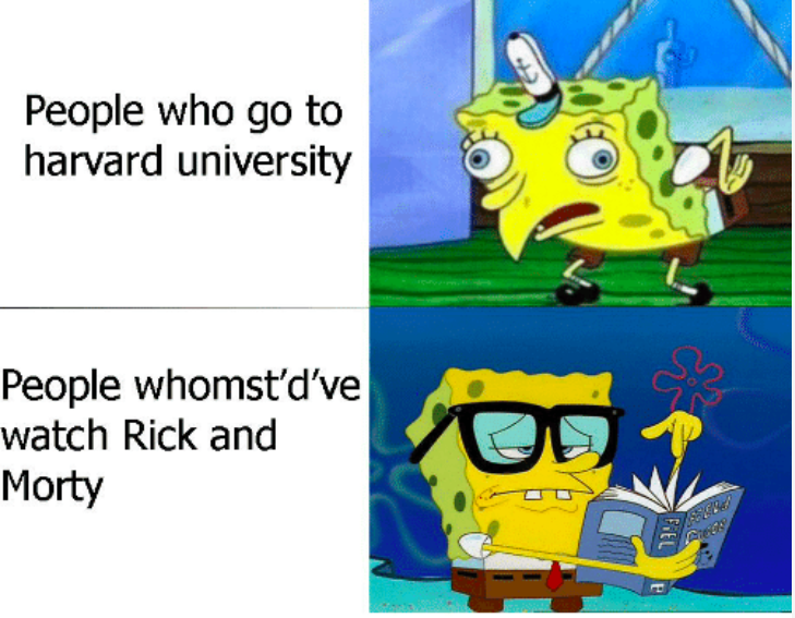 people who go to harvard university people who watch rick and