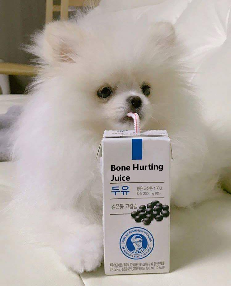 Smol Doggo Bone Hurting Juice Know Your Meme