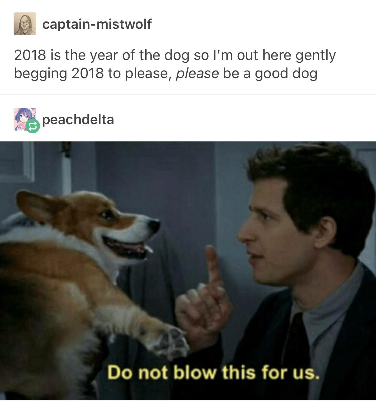 Captain mistwolf 2018 is the year of the dog so lm out here