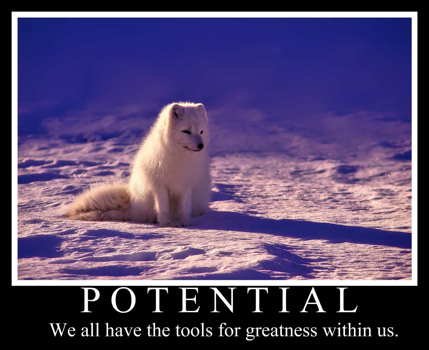 POTENTIAL We All Have The Tools For Greatness Within Us