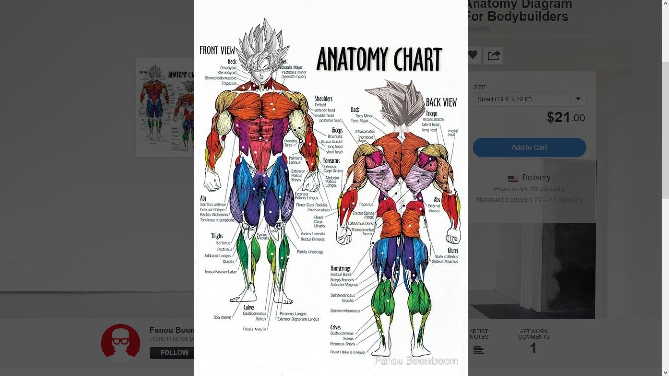 Super Sayan Anatomy Diagram | Dragon Ball | Know Your Meme