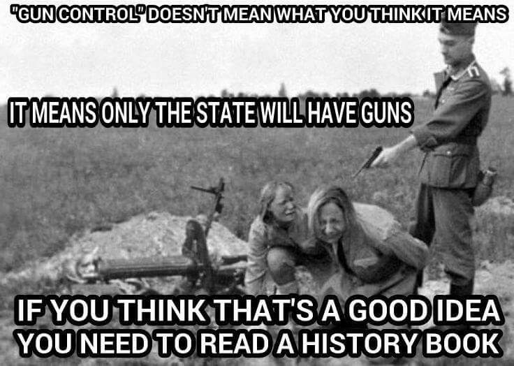 Image result for gun control meme
