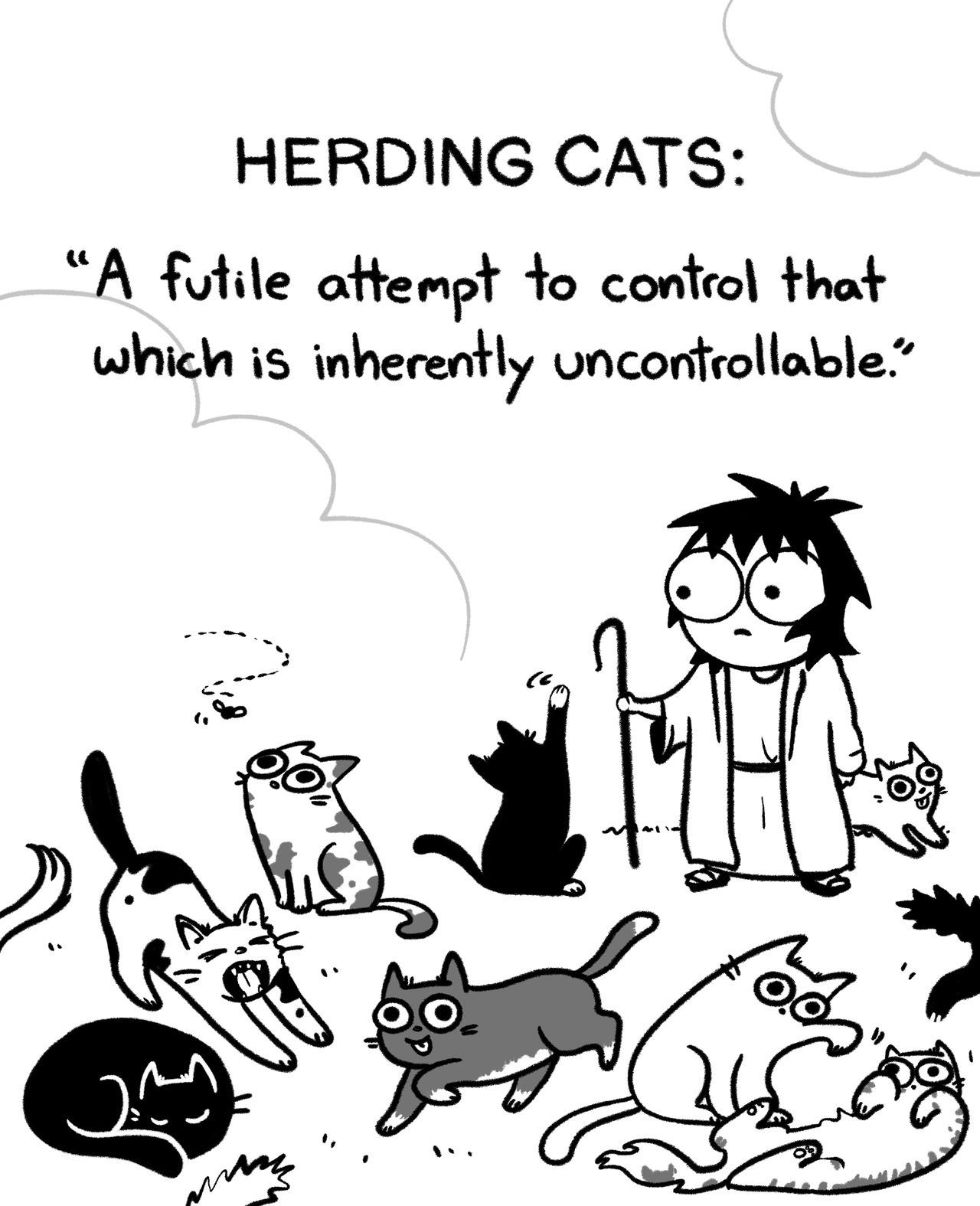 Herding Cats Sarah S Scribbles Know Your Meme
