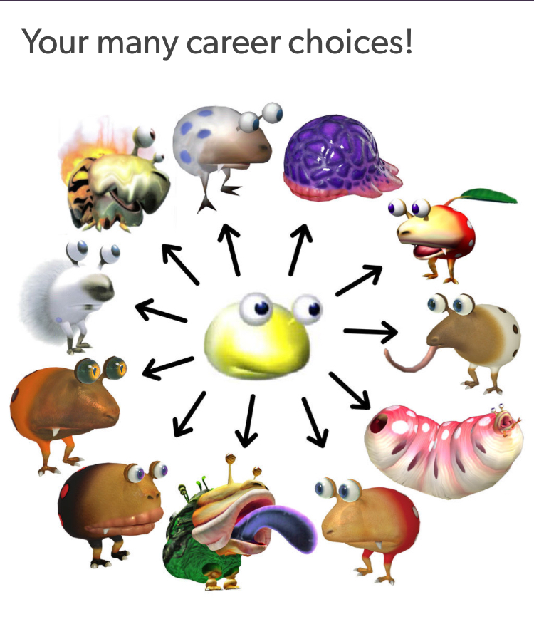 Your Many Career Choices Pikmin Know Your Meme