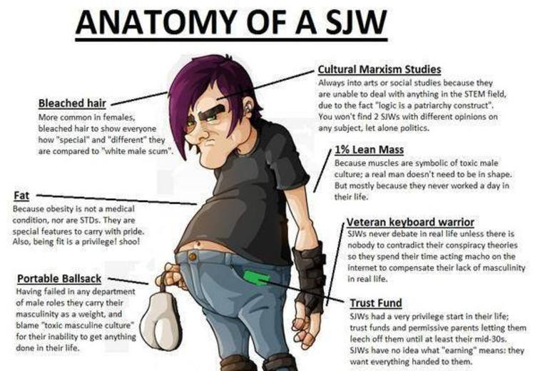 Anatomy Of An Sjw Social Justice Warrior Know Your Meme