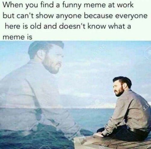 That Feeling When You See A Funny Meme But No One Around To Show It
