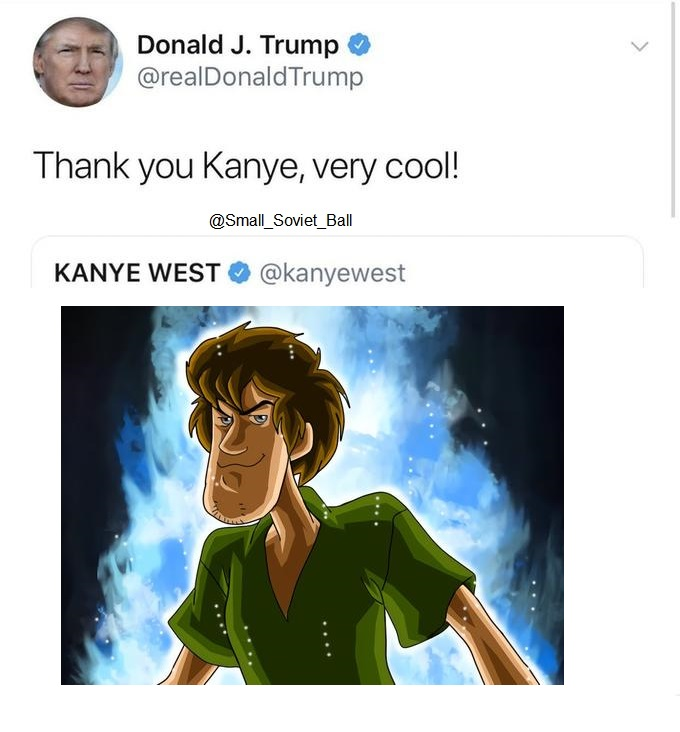 s h a g g y thank you kanye very cool know your meme
