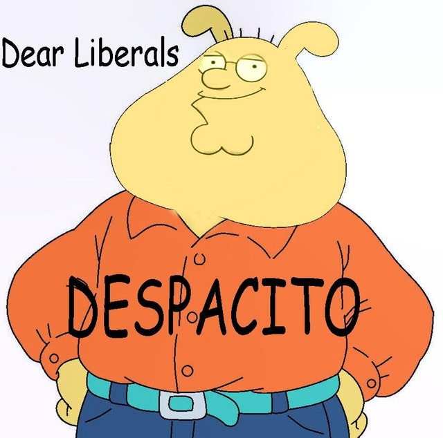 holy crab liberals | Despacito | Know Your Meme