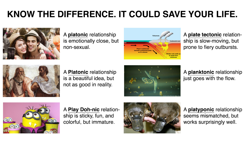 Platonic relationship non The 4