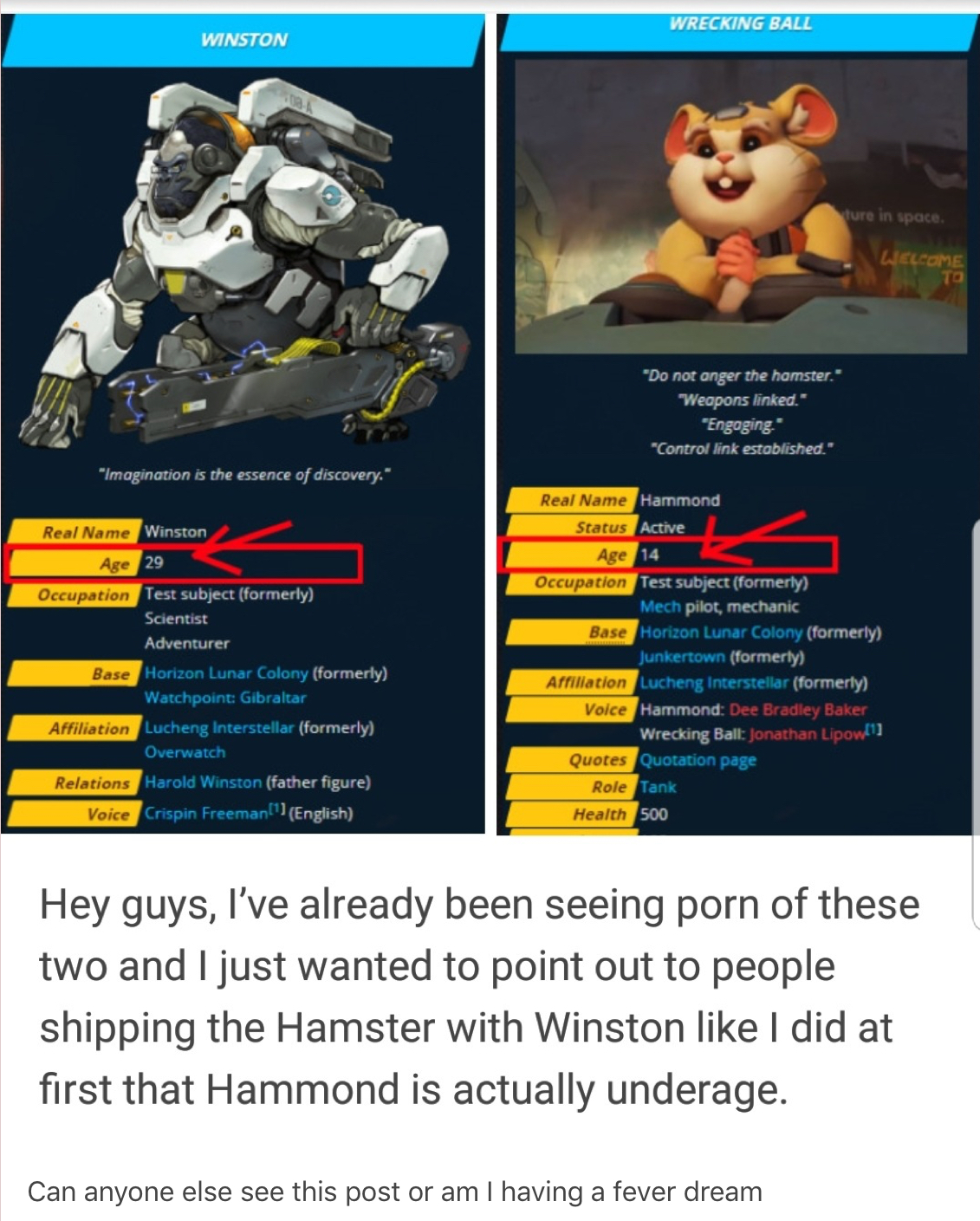 Overwatch dont draw hamsterxgorilla porn because the hamster might be underage is probably the single most surreal summation of the state of discourse