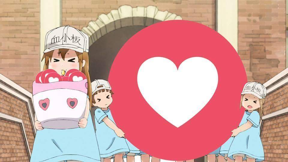 Platelets are for wholesome actions only | Hataraku Saibou ...