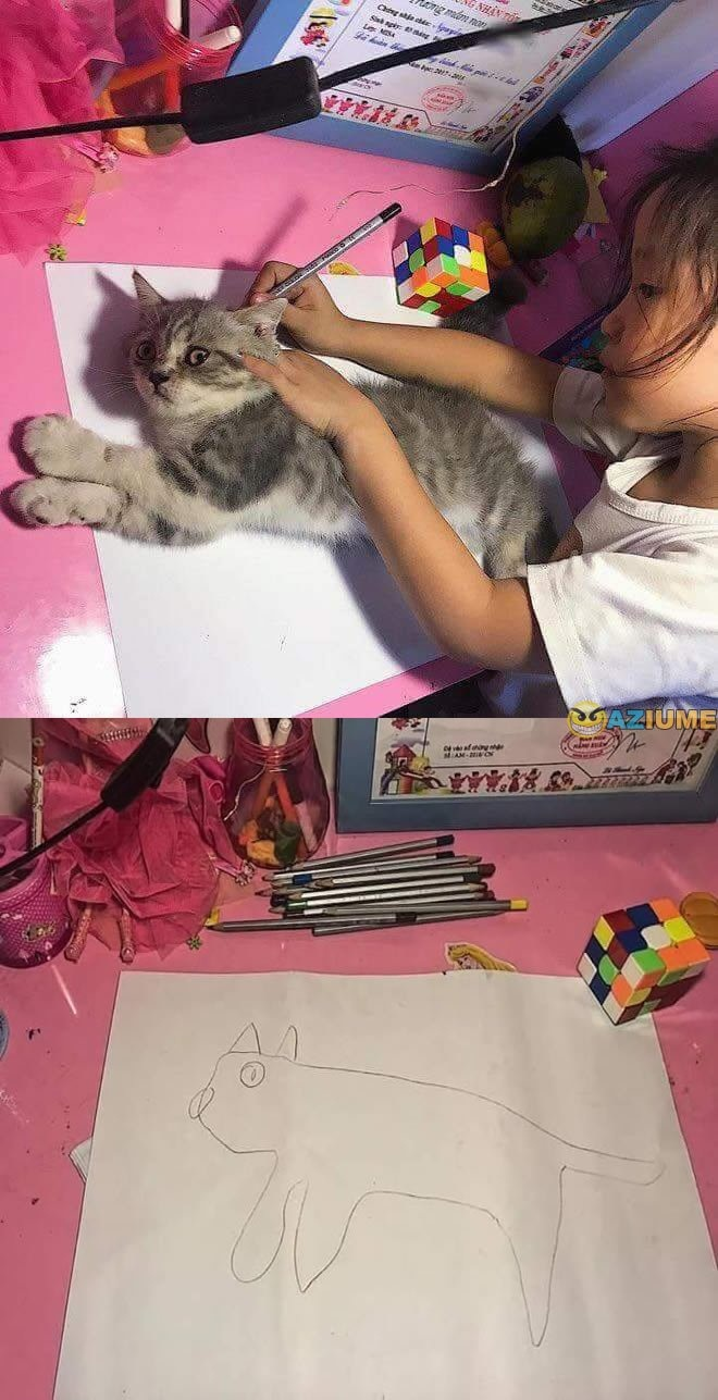 Cat Template Girl Tracing Cat Know Your Meme