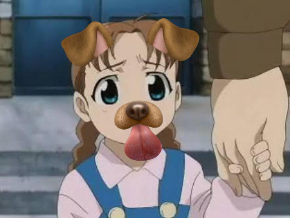 Fullmetal Alchemist Memes Dog