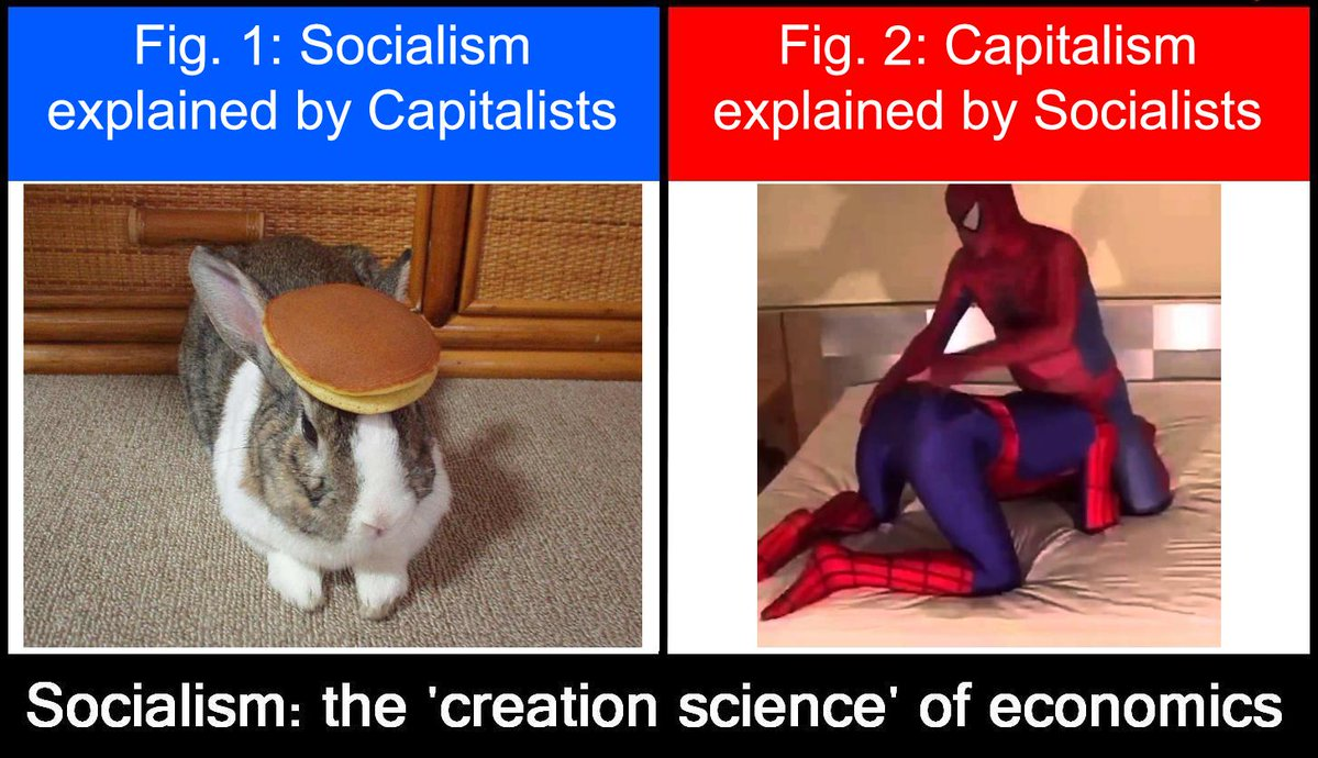 Socialism Vs Capitalism Shitpostbot 5000 Know Your Meme