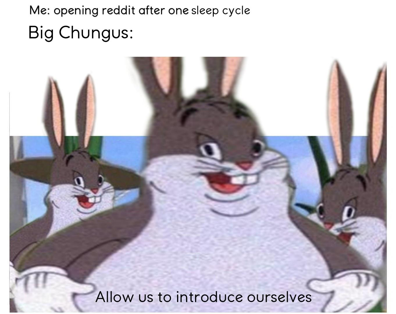 Allow Us To Introduce Ourselves Big Chungus Know Your Meme